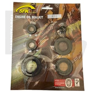 oil seal kit a80